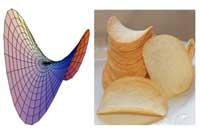 chipsandhparaboloid