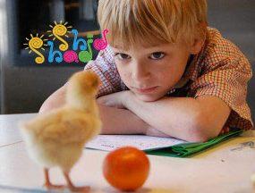 تفکر-خلاق کودک