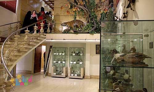 موزه-دارآباد
