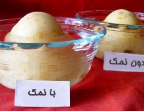 سیب-زمینی-نمکی
